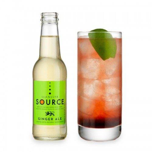 Llanllyr Source - Ginger Ale